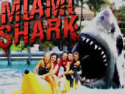 Play Miami Shark